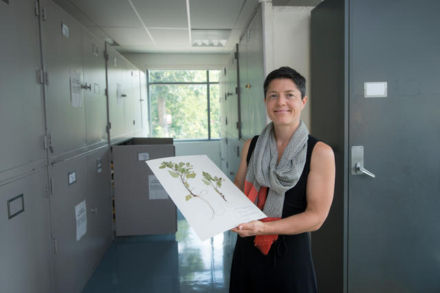 Andrea Weeks holding floral samples in the Herbarium